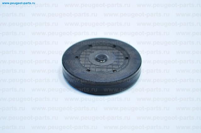 Заглушка шестерни ГРМ Рено 2.2-2.5dCi  G9T,G9U