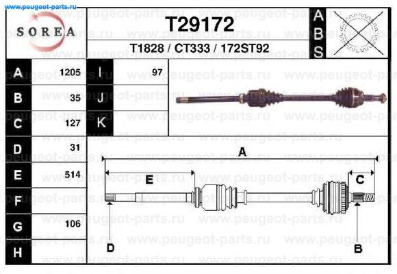 T29172