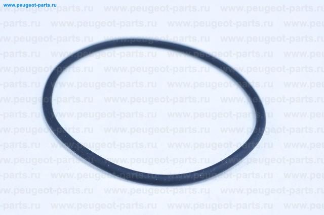 Кольцо-уплотнитель термостата Ducato (250) 11-> , Iveco Daily III 12-> 2.3 Euro 5