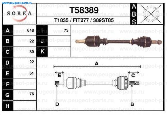T58389
